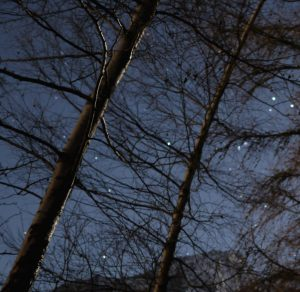 nightsky stars mountains